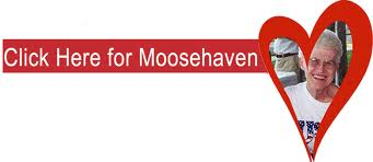 Moose poker tournament 2017